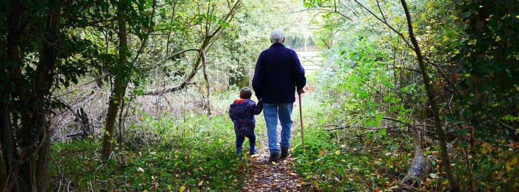Forest stroll - Grandparentage